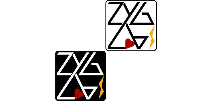 zyglabs_V0_half_half_730x350